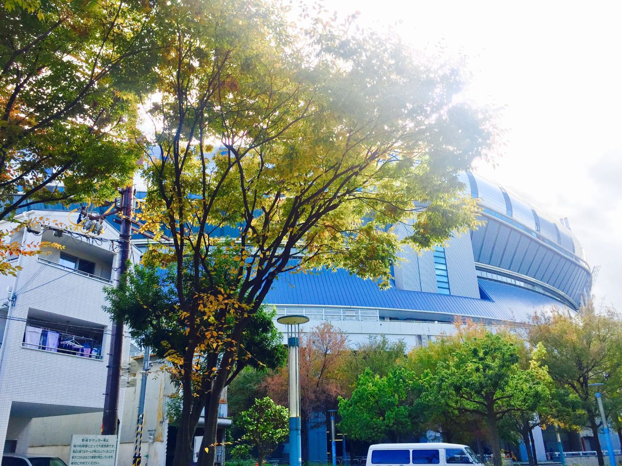 シティ ドーム イオン 大阪 モール