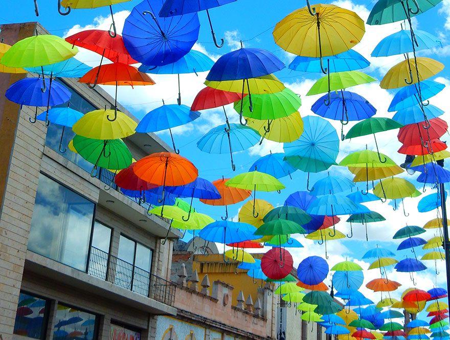 「本日は傘の日【6月11日限定 傘が全品30% OFF】」の写真