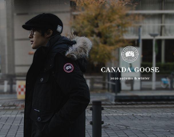 CANADA GOOSEの写真
