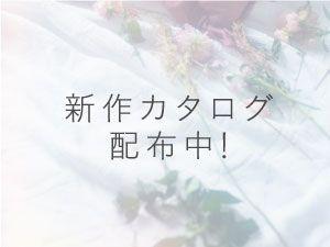 「新作カタログ配布中!」の写真