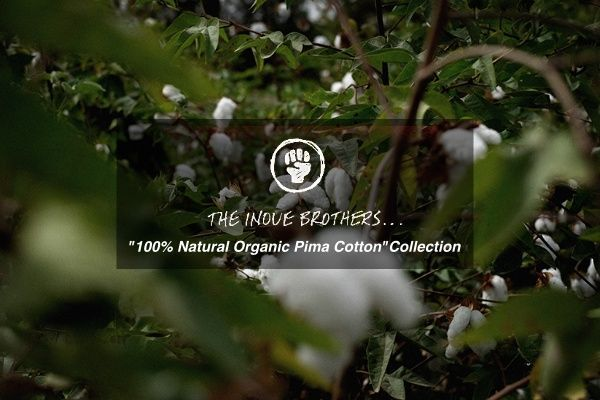 "THE INOUE BROTHERS...""100% Natural Organic Cotton"" Collectionの写真"