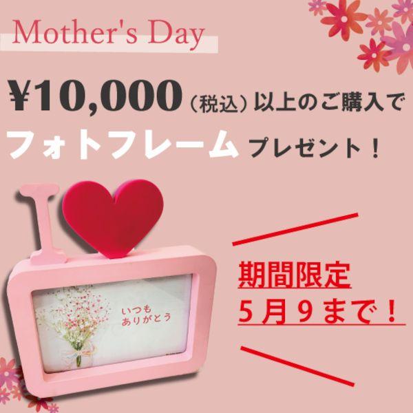 「◇母の日キャンペーン特集◇」の写真
