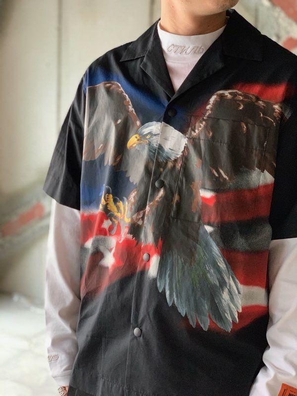 eagle impactの写真