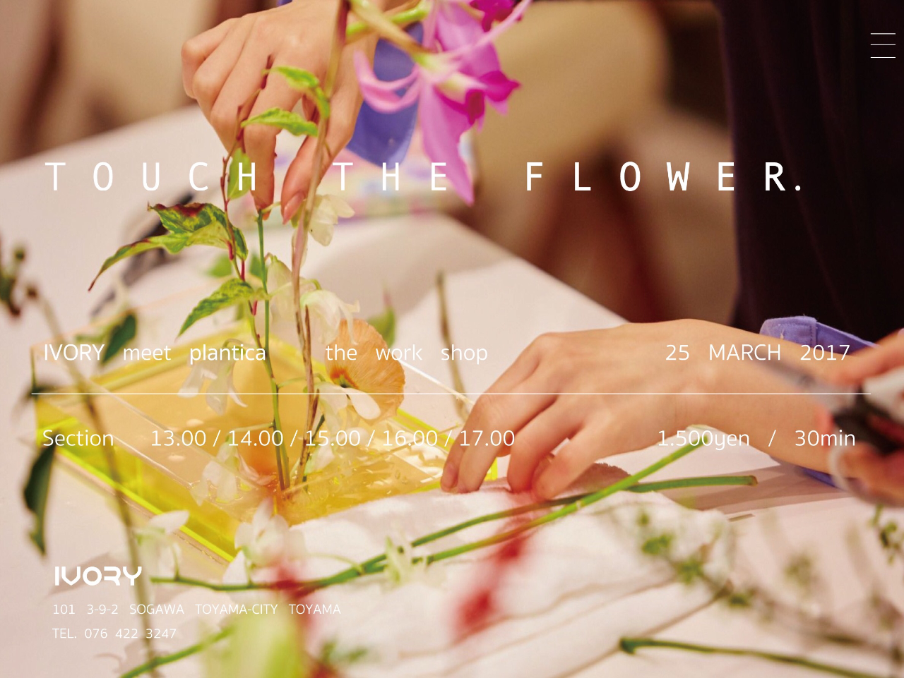 TOUCH THE FLOWER.の写真
