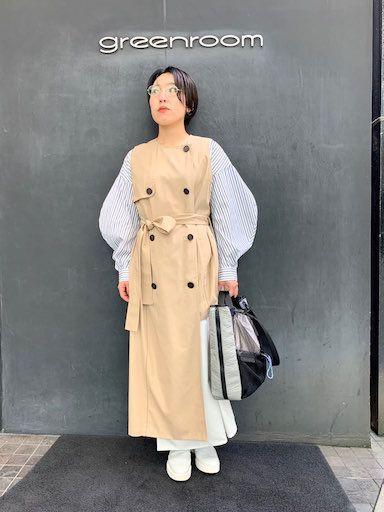 Dress like Coatの写真