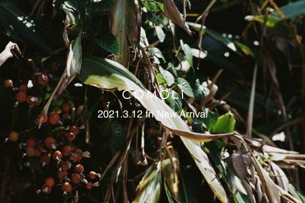 COMOLI 2021.3.12 fri New Arrivalの写真