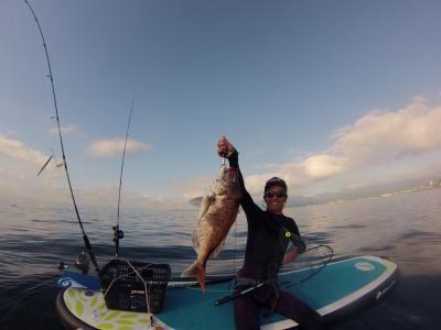 サップフィッシングで大鯛