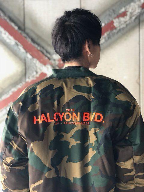 HALCYON BLVD.の写真